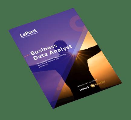 Mockup-Business-Data-Analyst